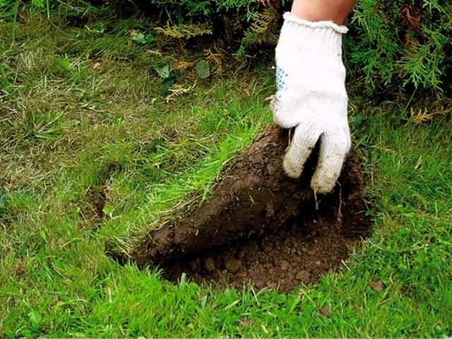 Выкопать кусок газона