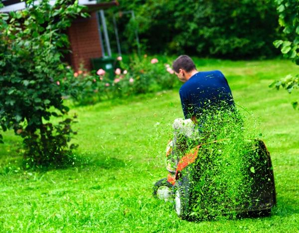 Мульчирование газона газонокосилкой 1