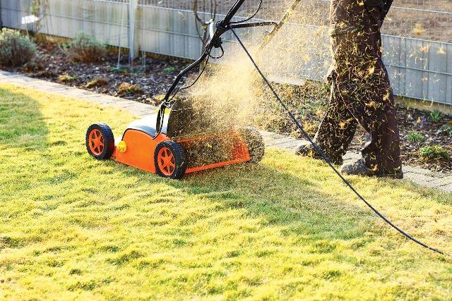 Мульчирование газона электрогазонокосилкой