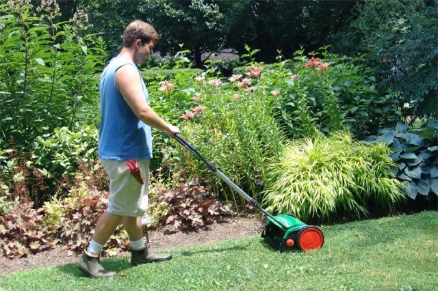 Стрижка газона ручной газонокосилкой