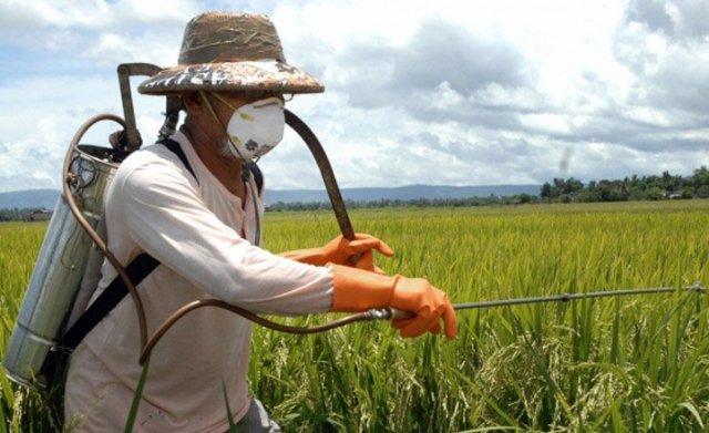 Индивидуальная защита при работе с гербицидами