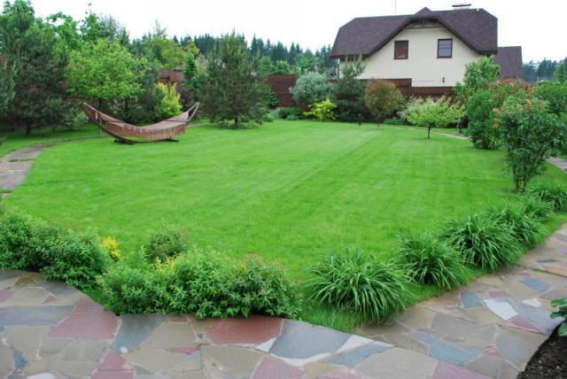 Газон на даче: как сделать зеленую лужайку своими руками 21