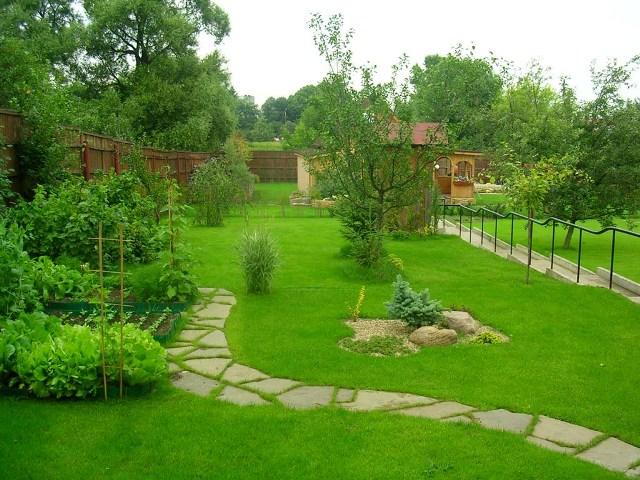 Обустройство газона на даче своими руками