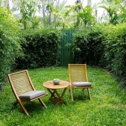 Выбираем кустарники для дачной живой изгороди