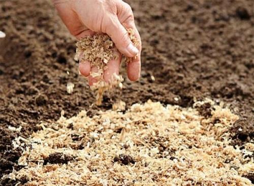 Удобрение почвы опилками