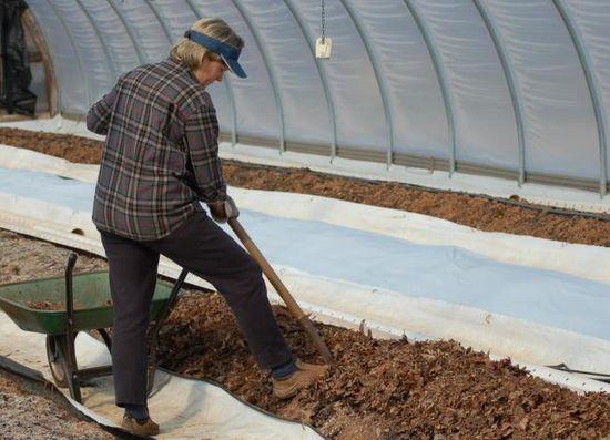 Перекапывание земли в теплице
